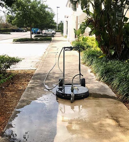 https://allamericansanitationfl.com/wp-content/uploads/2018/04/pressure-washing-1-500x550.jpg